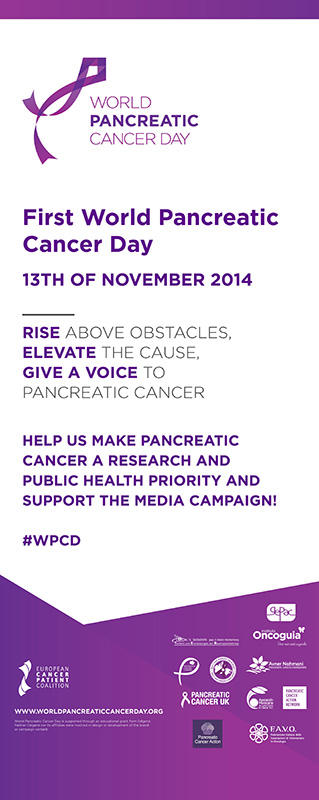 first_world_pancreatic_cancer_day.jpg